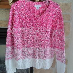 Liz Claiborne Hombre V Neck Sweater